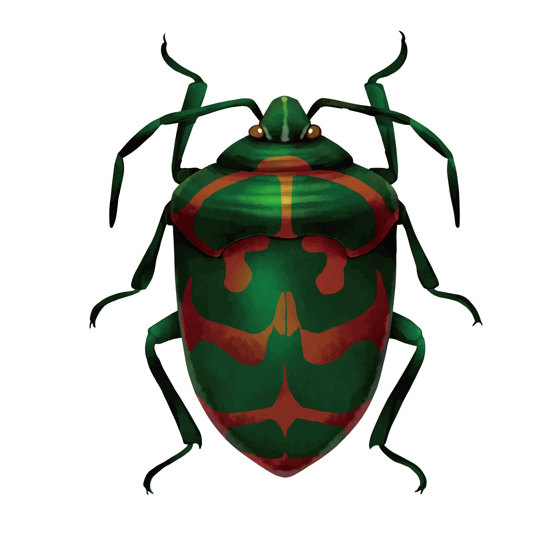 [認知症介護]カメムシを食べてしまう異食行為の原因と対策