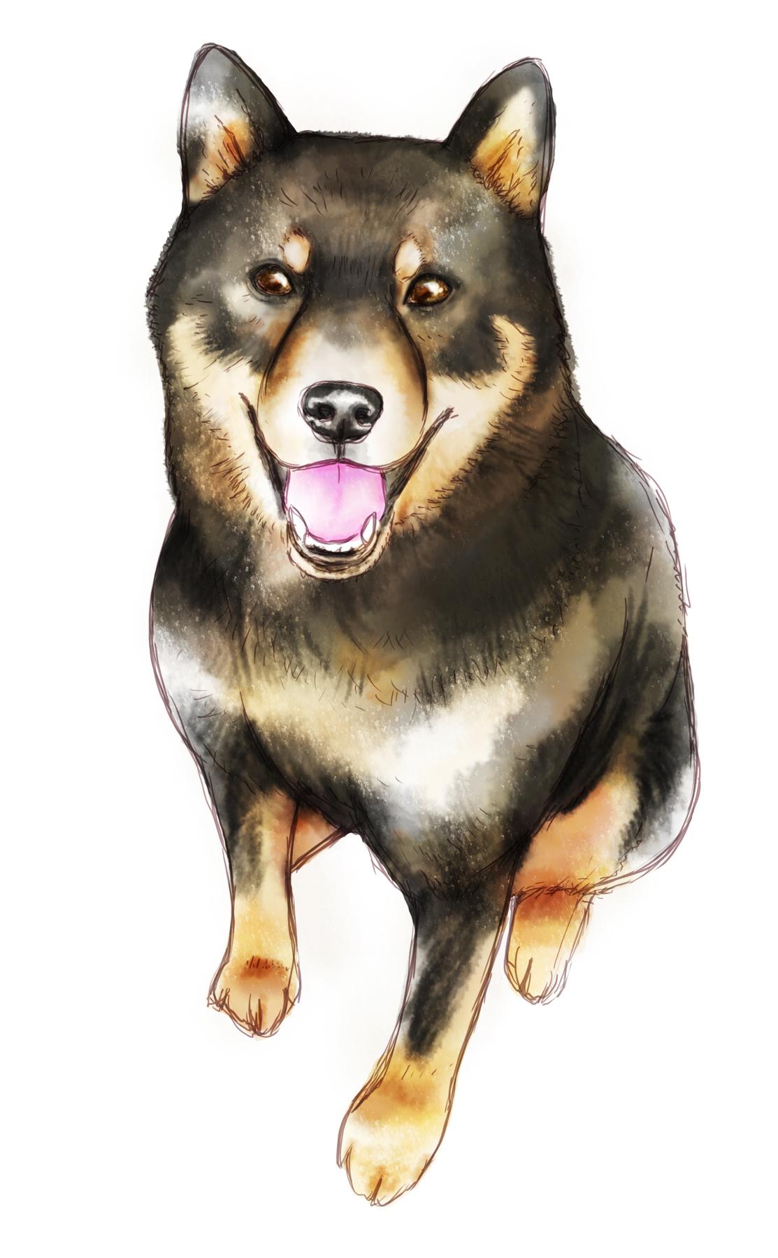 レビー小体型認知症により犬の幻覚が見える女性への対応